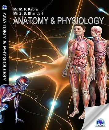 anatomy & physiology (2)-ts1461414910